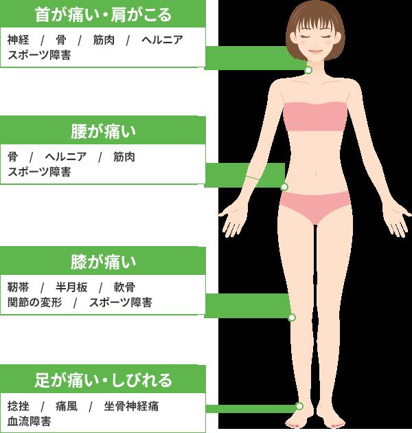 体前面の主な症状