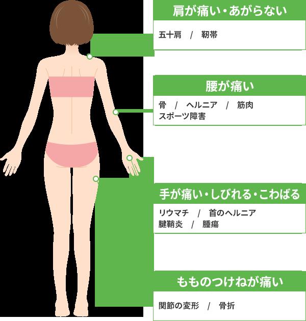 体背面の主な症状
